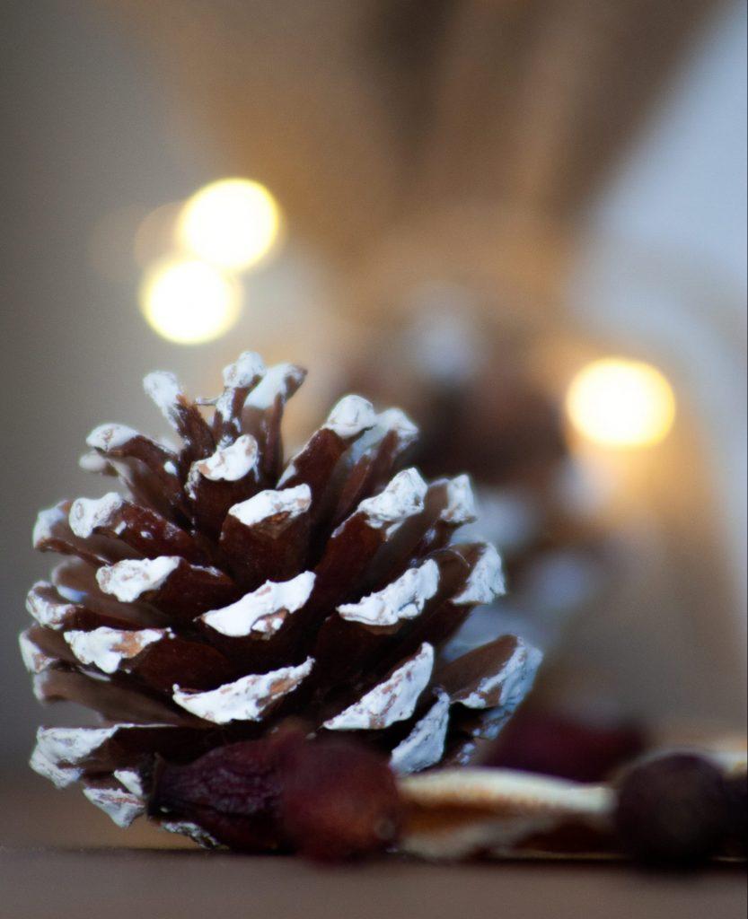Tannenzapfen als Weihnachtsdeko